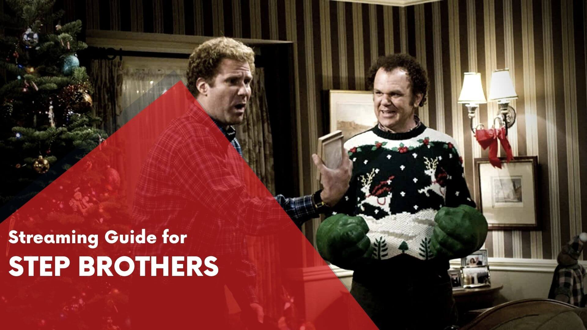 Step Brothers Streaming Guide