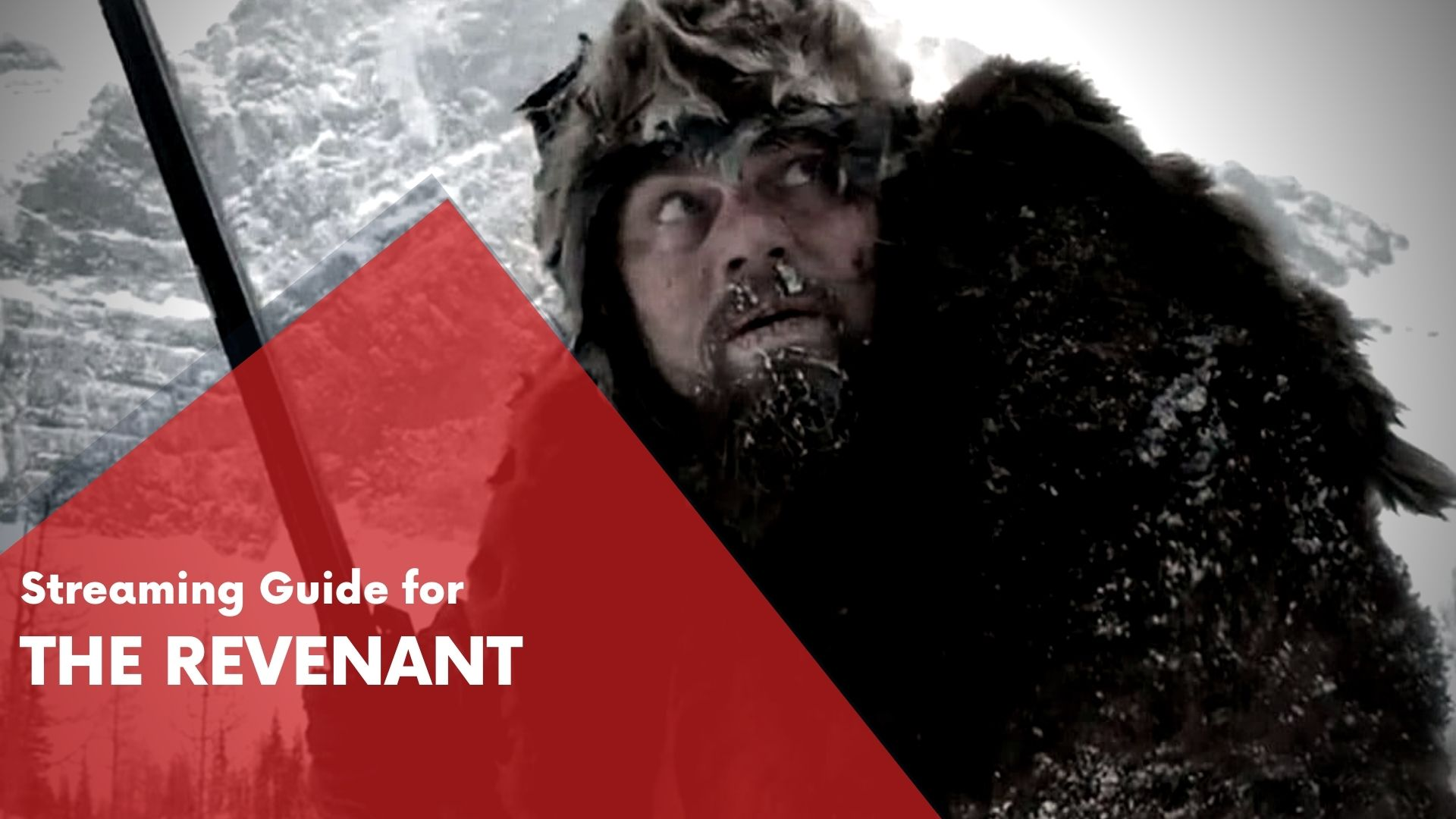 Answering if The Revenant can be watched online on Hulu