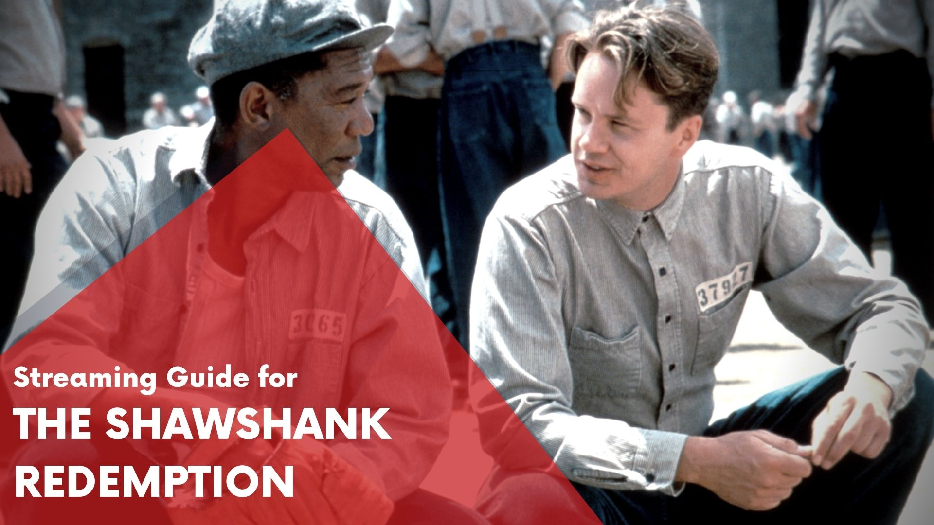 Answering if The-Shawshank-Redemption can be watched online on Hulu