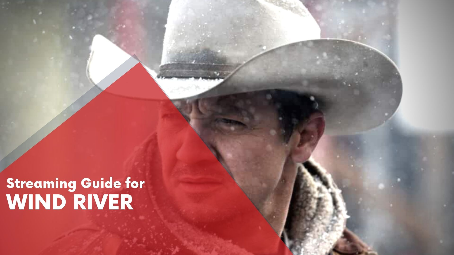 Wind River Streaming Guide