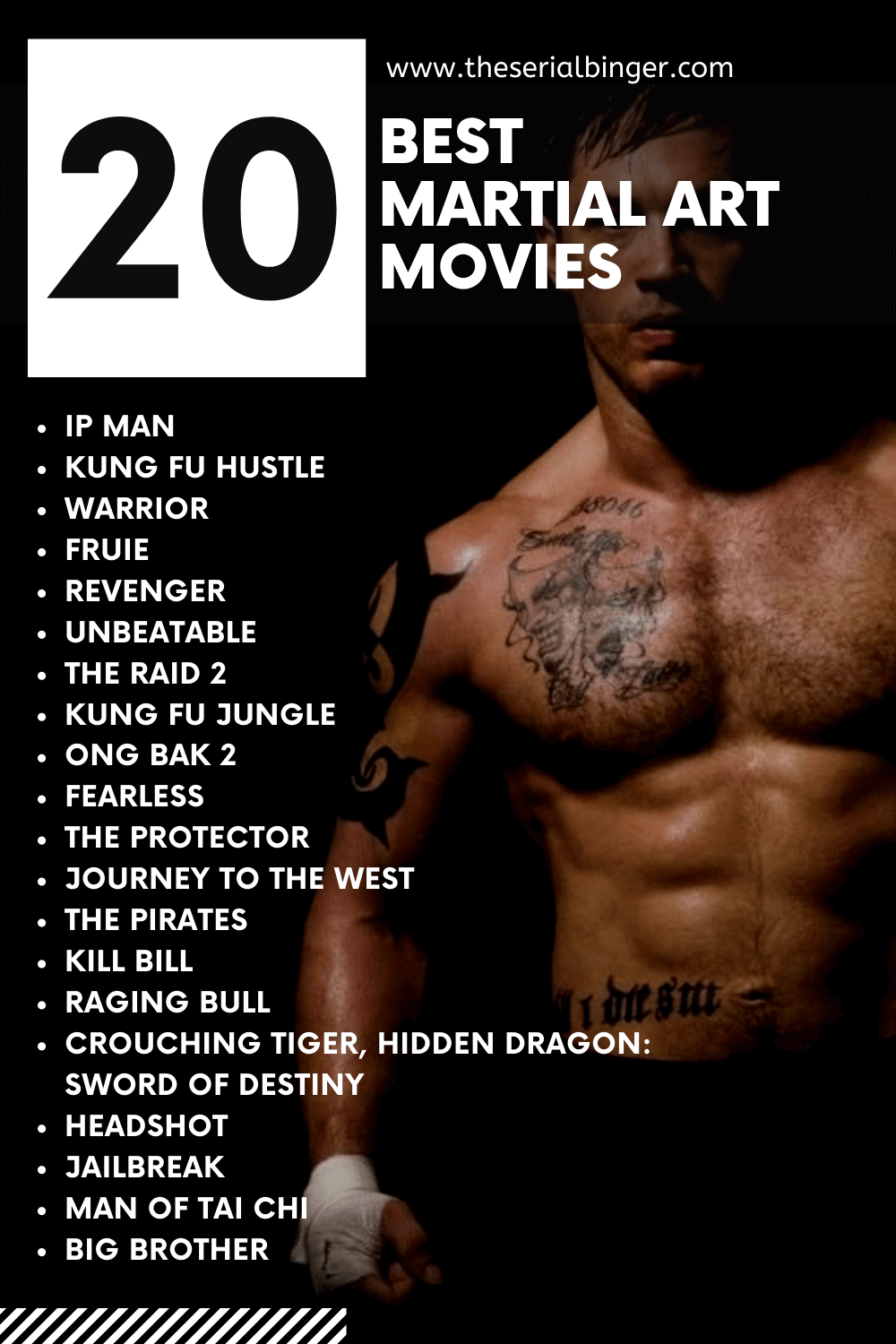 infographic describing 20 best martial art movies of all time